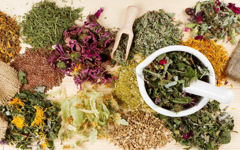 Лекарственные травы при псориазе