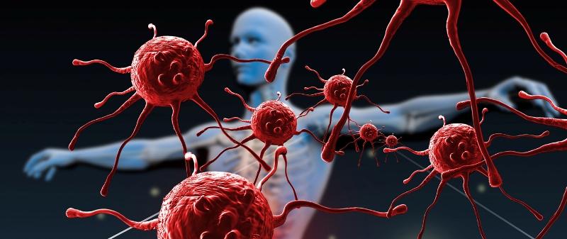 агрессивная реакция иммунных клеток