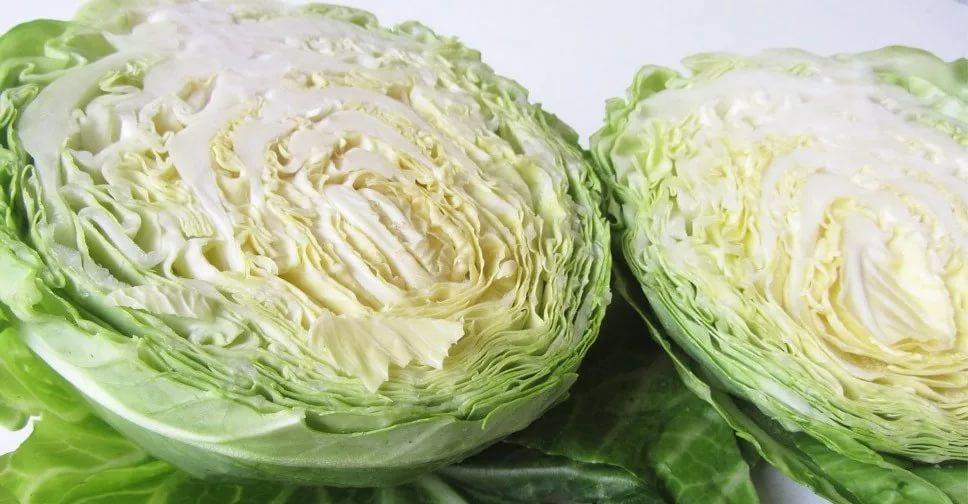При псориазе рекомендовано ввести в рацион белокочанную капусту