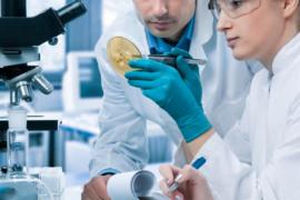 Лечение псориаза медикаментозными и народными средствами