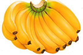Можно ли есть бананы при псориазе